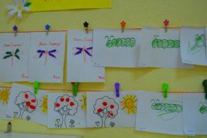 насекомые гусеницы и стрекозы